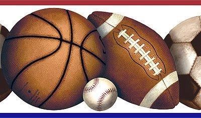 Houston Local Sports - CityScope Net Sports Page, Houston, Texas Teams, Arenas, Baseball