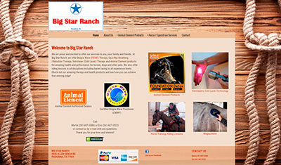 Big Star Ranch Website